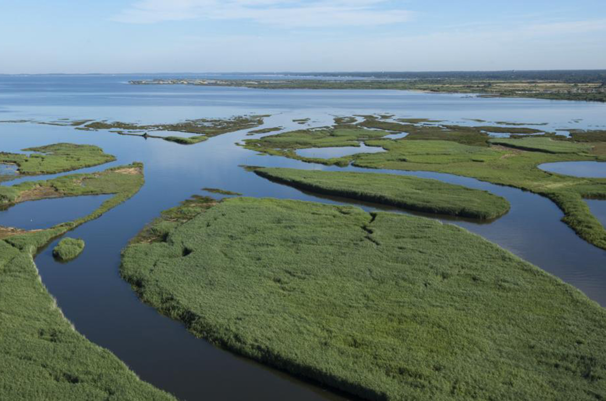 Escapades dans le delta de l'Eyre