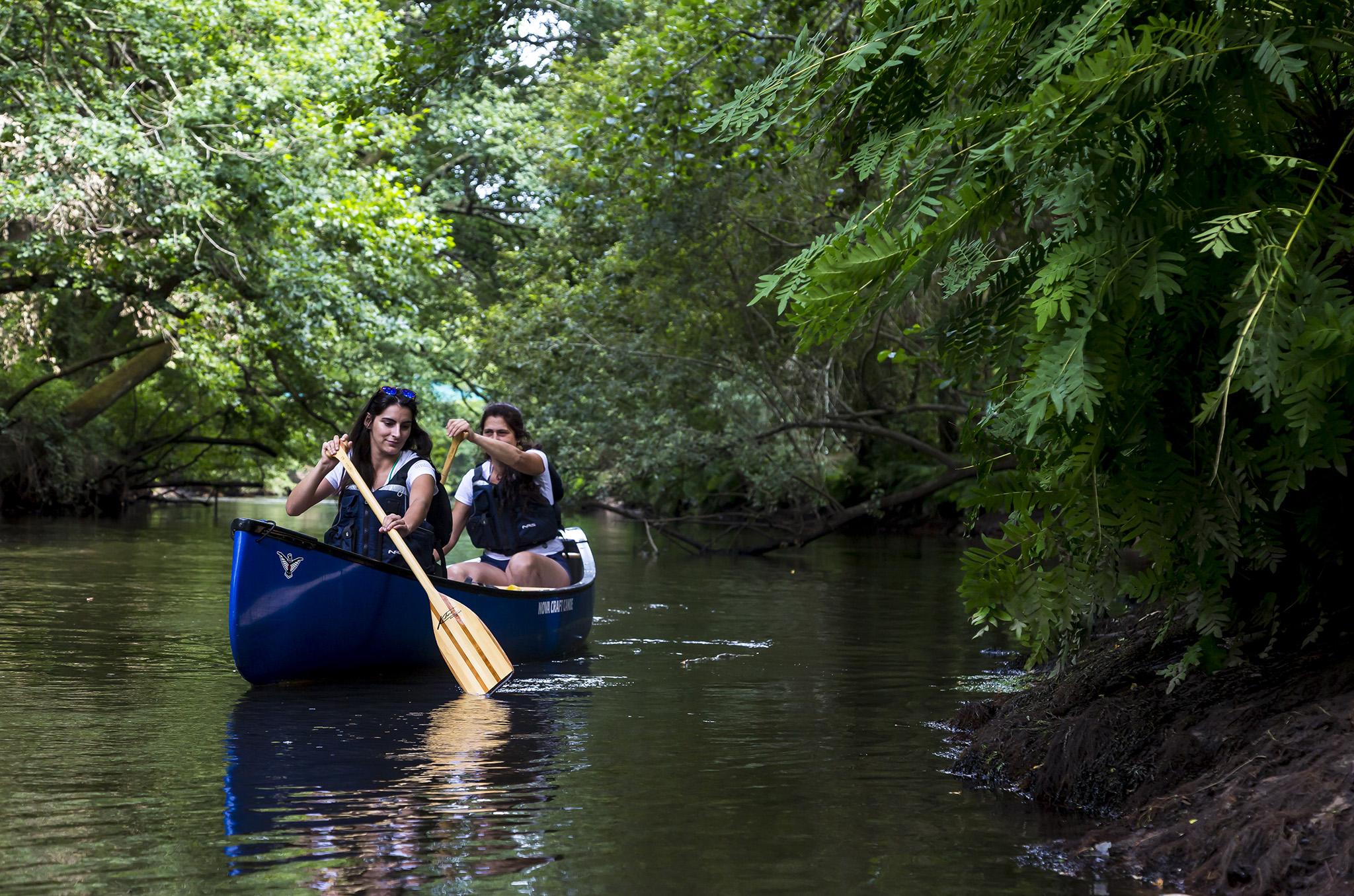 Itinérance en canoë